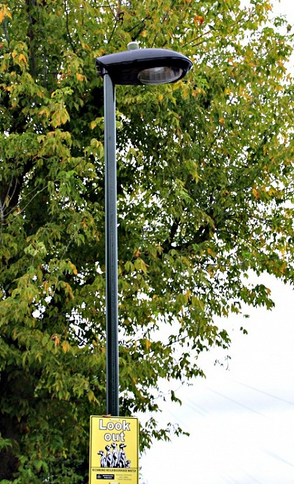 • Thousands of street lights to be replaced across the Borough